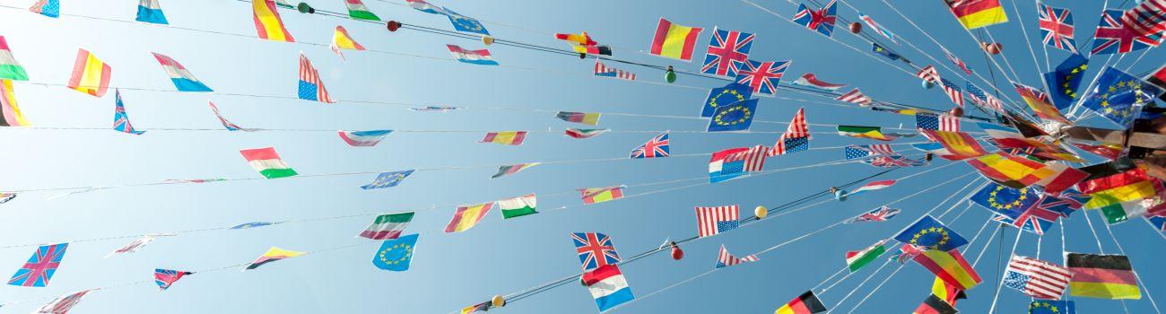 Vebinaras: Visos Europos ir Viduržemio jūros regiono lengvatinės kilmės aktualijos